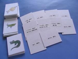 試験に出る 卵生・胎生カード!