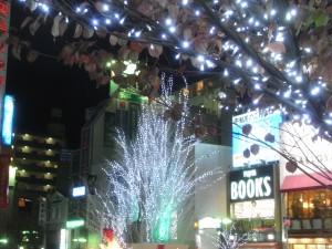 自由が丘駅前のクリスマス