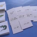 卵生・胎生カード