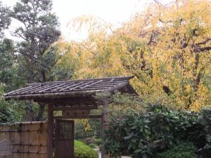 甘泉園 (早稲田)