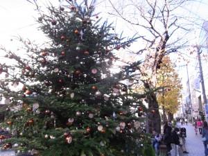 クリスマスツリー(自由が丘)