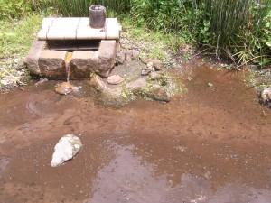 椿山荘の井戸の前に『かわにな』を発見!